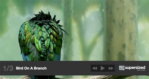 supersized-slideshow-screenshot
